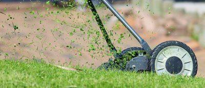 Košnja trave proizvede močne in trdne poganjke