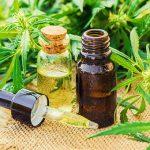 Pozitivni učinki CBD olja