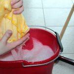 Brezhibno čiščenje na domu opravijo drugi namesto nas