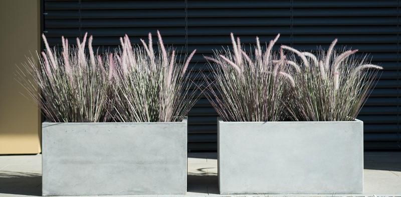 Betonske posode za cvetje